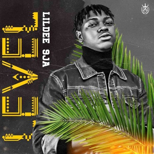 Lildee 9ja – Level