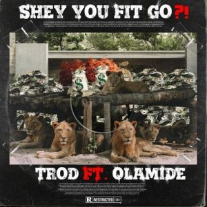 Mp3: Trod Ft. Olamide – Shey You Fit Go?